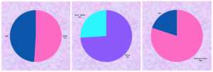 Set of three pie charts. Two are blue & pink, one is blue & purple.